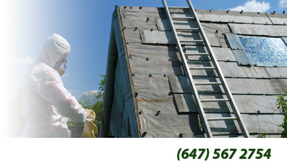 Asbestos Removal Toronto - About Main Image