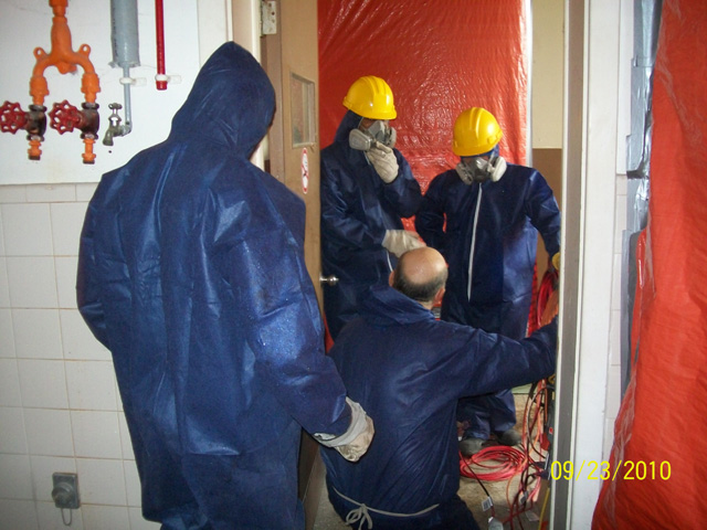Cost Of Asbestos Removal